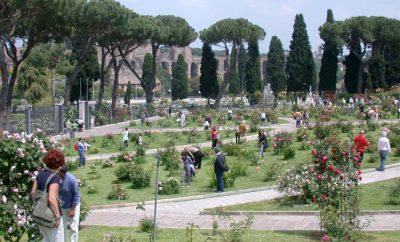 Rome's Rose Garden: a romantic's paradise by the Circus Maximus