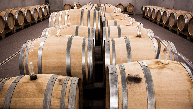 Winery visit Rome Lazio